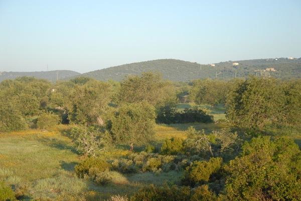 B&B Cas al Cubo - uitzicht vanaf het terras - view from the terrace
