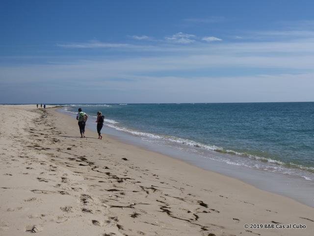 Ilha da Armona Algarve Strand