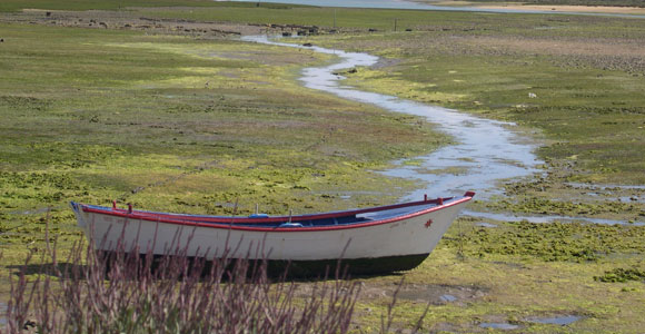 The Ria Formosa National Park is a protected nature reserve resembling the wetlands The Waddensea in The Netherlands.